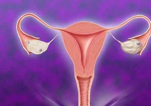 Người phụ nữ 45 tuổi có tử cung trẻ như mới 20, da dẻ vô cùng hồng hào: Bí quyết chính là nhịn ăn 2 món, tử cung sẽ tự động khỏe mạnh - Ảnh 1