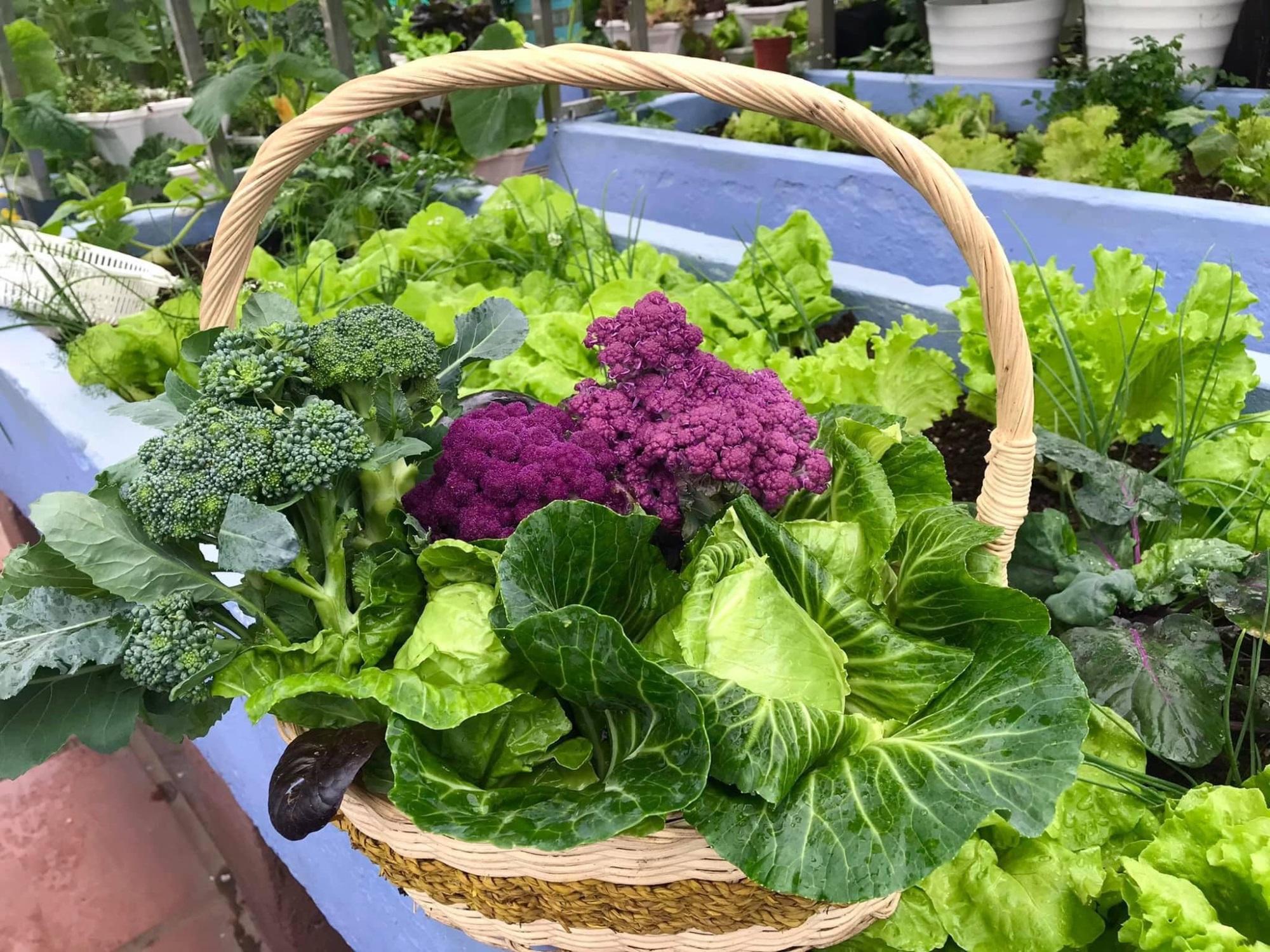 Mẹ đảm 'mách nước' cách thiết kế và trồng rau trên sân thượng cực dễ, rau trái có ăn quanh năm - Ảnh 9