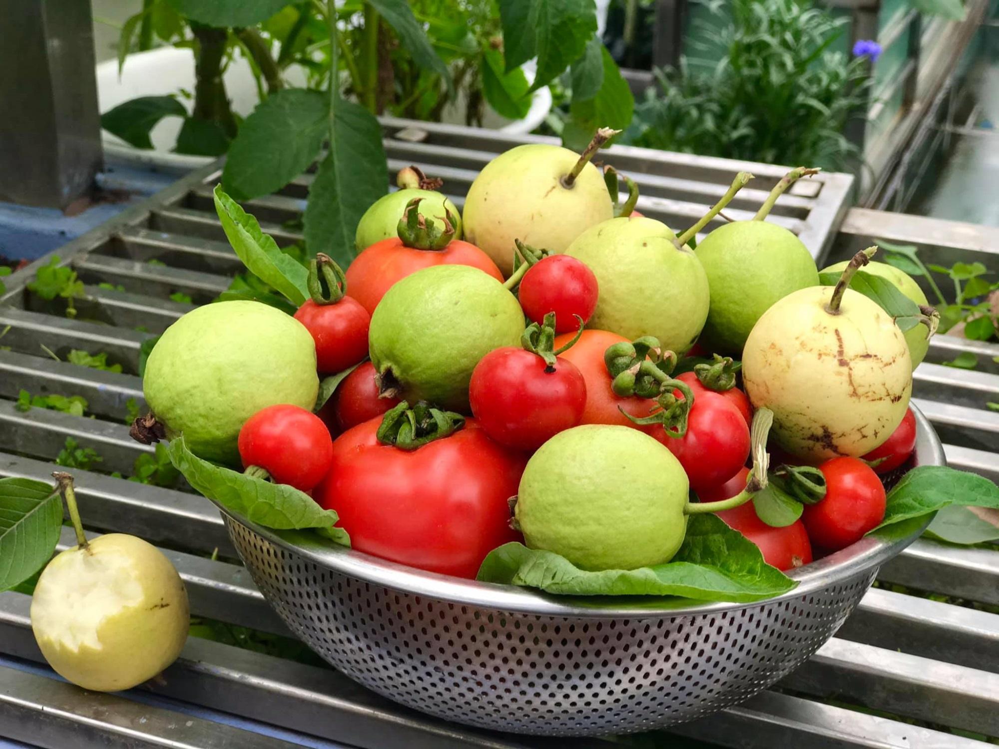 Mẹ đảm 'mách nước' cách thiết kế và trồng rau trên sân thượng cực dễ, rau trái có ăn quanh năm - Ảnh 10