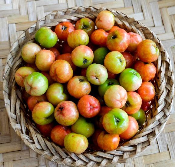 Loại quả có lượng vitamin C cao gấp 100 lần cam chanh giúp chị em đẹp da, giữ dáng lại phòng nhiều bệnh tật - Ảnh 1