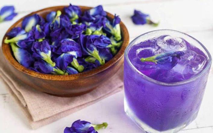 Trong hoa đậu biếc có 2 bộ phận chứa độc tố có thể gây ngộ độc, nhiều gia đình vẫn chưa biết để dùng cho đúng - Ảnh 3