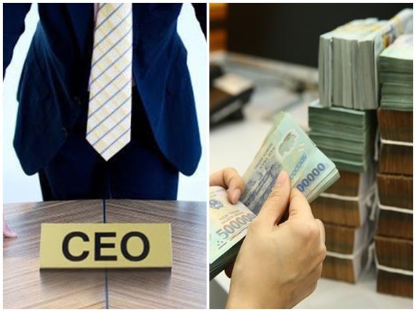 Tiết lộ sốc về mức lương CEO của 3 ngành hot tại Việt Nam: Một tháng GẦN CẢ TỶ, chưa bao gồm thưởng và các khoản khác