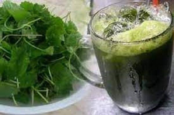 Những việc mẹ bầu cần lưu ý khi ăn rau má để không gây hại đến sức khỏe của mẹ, tổn hại đến con - Ảnh 1
