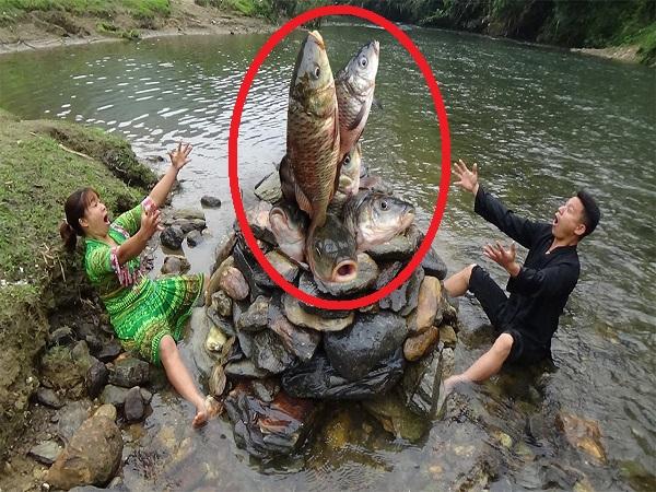 Dùng đá chất làm hang để bẫy cá, hai vợ chồng 'TRÚNG ĐẬM' vì bắt được cả đàn cá trắng