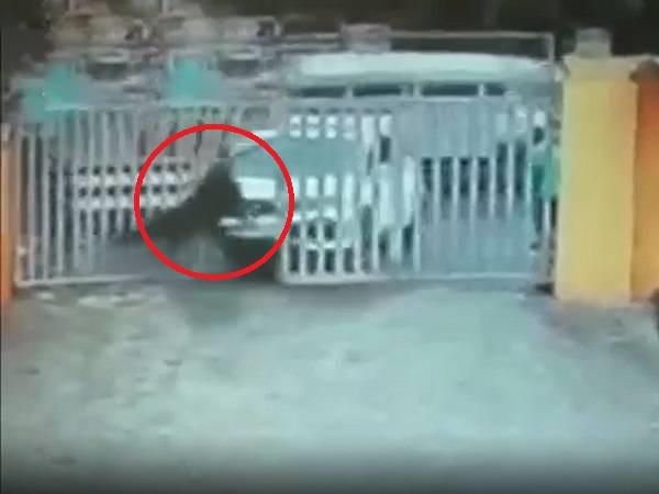 'THÓT TIM' trước khoảnh khắc nữ xế đạp nhầm chân ga và húc tung người chú bảo vệ lên không trung