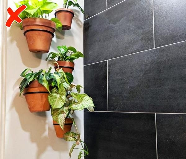 7 thứ không nên đặt trong phòng tắm tránh nguy hại sức khỏe - Ảnh 3