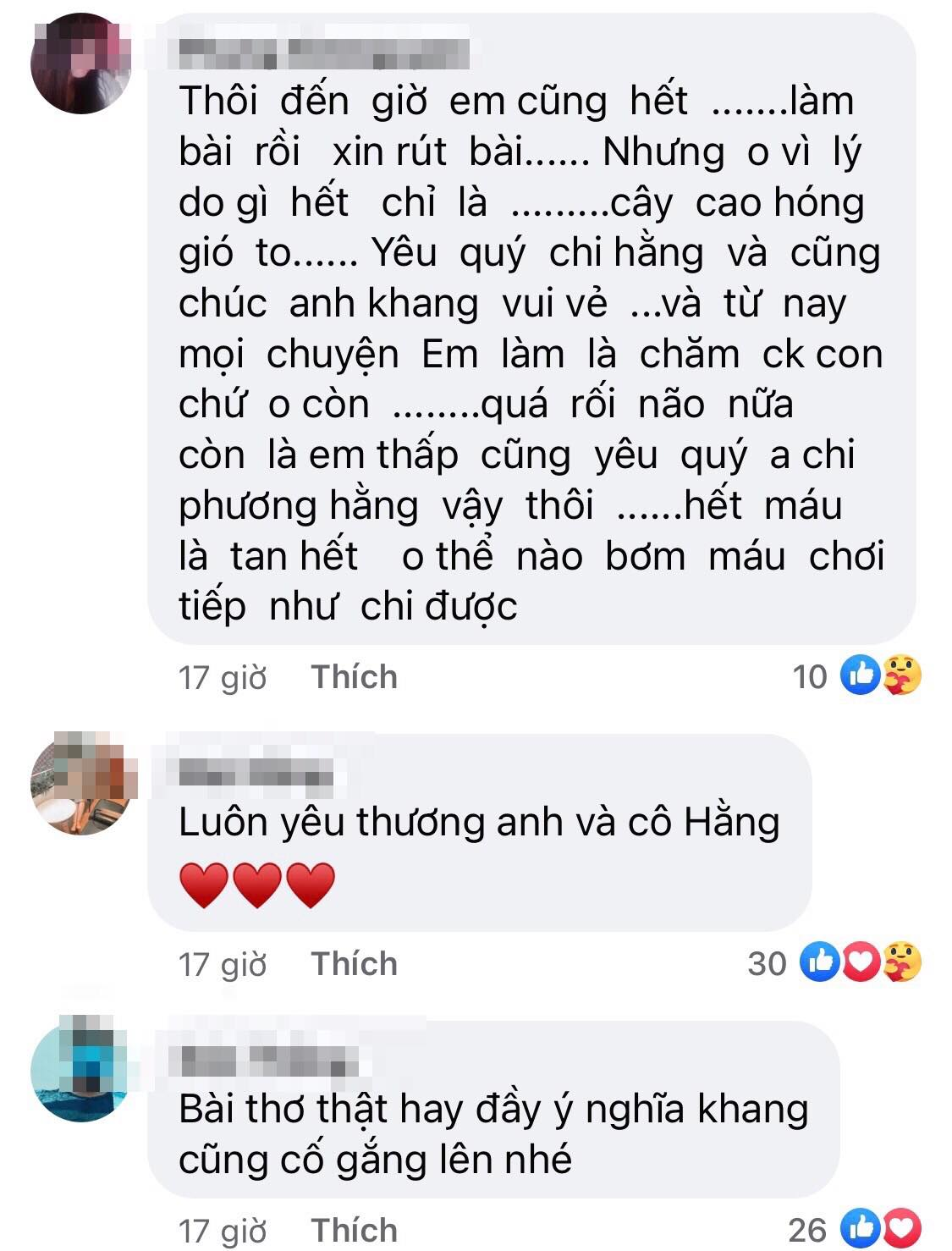 nguyen phuong hang 4