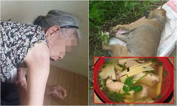 Thấy chó lăn ra chết sau khi ăn bát canh mẹ mình nấu cho vợ bầu, tôi điên tiết đánh đuổi bà về quê để rồi phải hối hận tột cùng - Ảnh 2