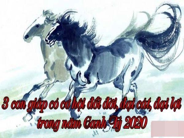 3 con giáp có cơ hội đổi đời, đại cát đại lợi trong năm Canh Tý 2020