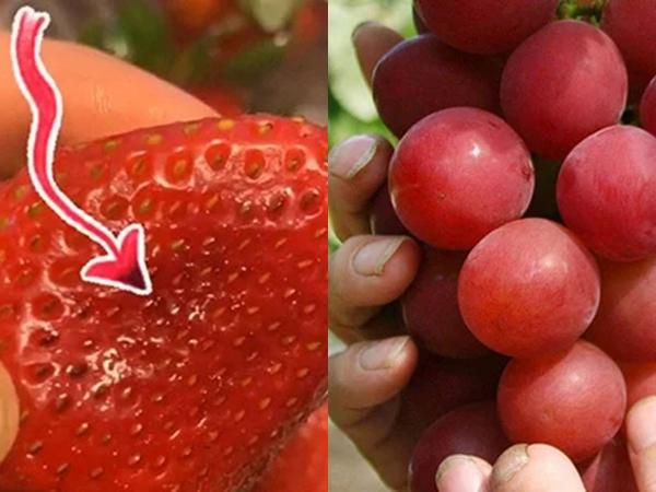 3 loại trái cây dễ chứa nhiều ký sinh trùng nhất, toàn là đặc sản đắt tiền