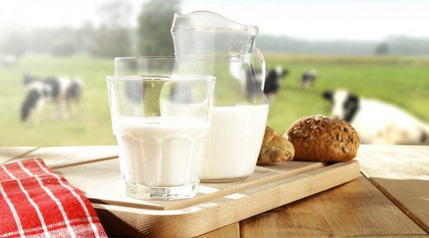 Chế độ ăn dặm cho bé bị dị ứng đạm sữa bò ba mẹ cần biết - Ảnh 2