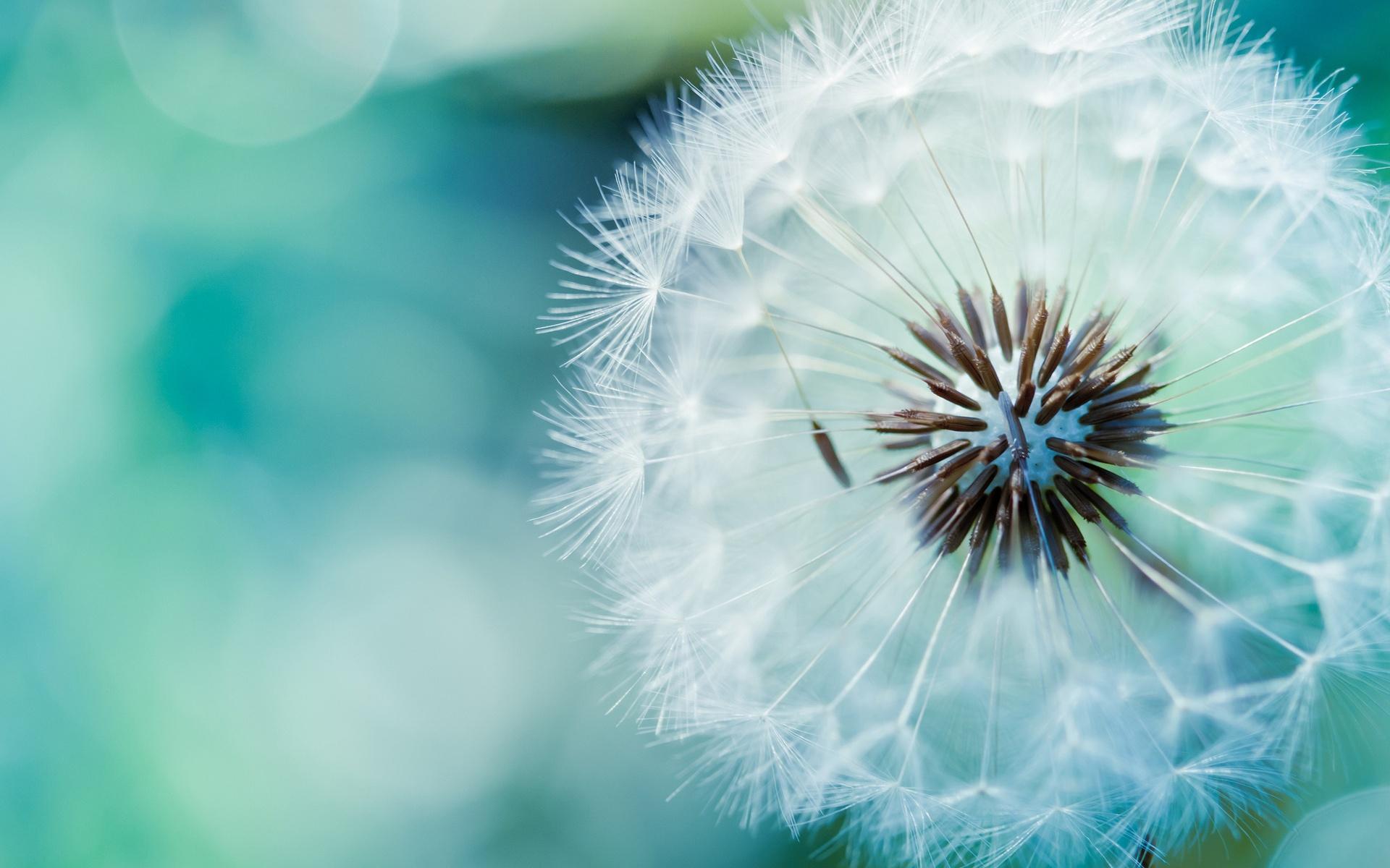 Vàng không thuần khiết, người không thập toàn, muốn vận mệnh tốt chỉ cần tâm trong sạch - Ảnh 2