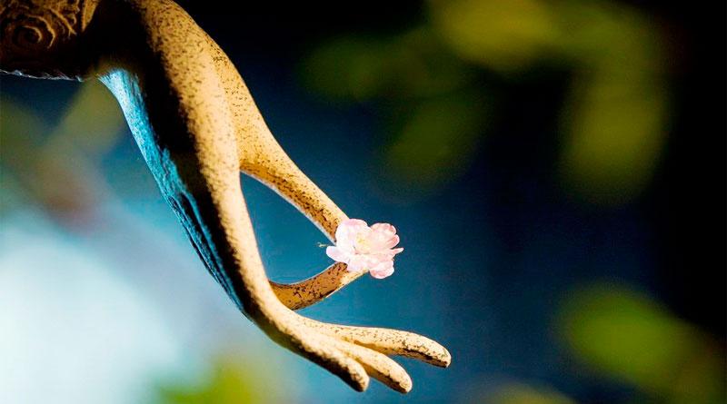 Phật dạy: con người nếu buông được 5 điều này thì cuộc sống sẽ nhàn hơn 10 phần - Ảnh 3