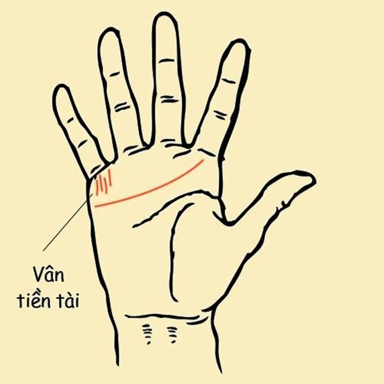 tuong ban tay 1