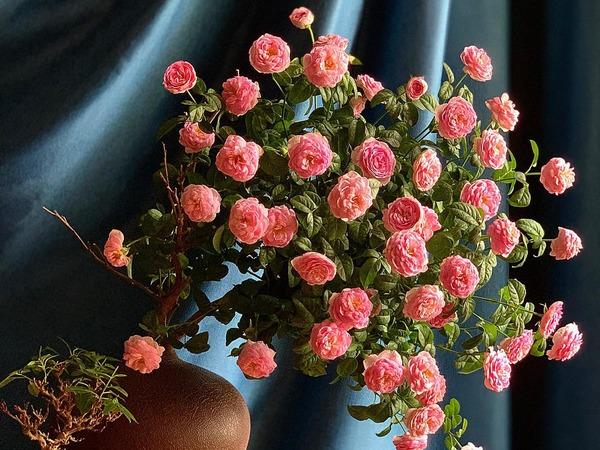 Cắm hoa hồng theo 'phong cách cổ điển', nhà cửa sang trọng, quý phái bội phần