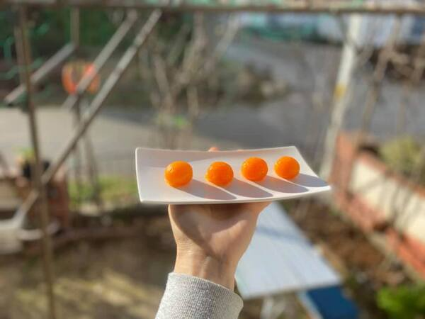 Bỏ túi bí quyết làm trứng muối siêu tốc, có ngay chỉ sau 7 ngày, đảm thành công mỹ mãn