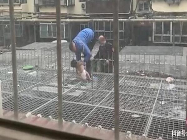 Thót tim cảnh em bé 4 tháng tuổi rơi từ tầng 5 xuống tầng 1, được nhân viên giao hàng giải cứu