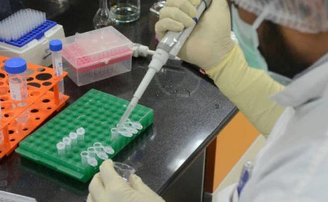 Phát hiện 240 chủng đột biến COVID-19 tại ổ dịch lớn thứ 2 thế giới, nguy cơ lây nhiễm mạnh hơn
